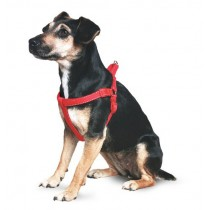 Nylon Padded Reflective Harness Red Medium Sz 4-6