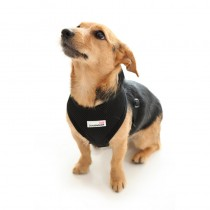 Doodlebone Soft Padded Dog Harness, Large, Black
