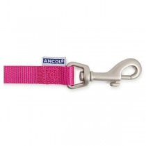Ancol Padded Nylon Dog Lead-Raspberry-25 mm / 1 in